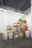 Phoebe Washburn<br />