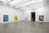 Stuart Hawkins<br /> <i>Everyone Knows What It Looks Like</i>, 2014<br /> Installation view