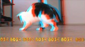 Keren Cytter<br /> Still from <i>Open House (3D)</i>, 2011<br /> Digital video<br /> 14:56